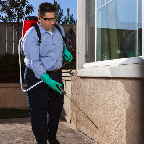 Pest Control Bend Oregon - Best Pest Control Bend Oregon Company I  Exterminator Bend Oregon